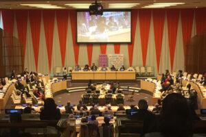 ECOSOC Chamber #EndFGM